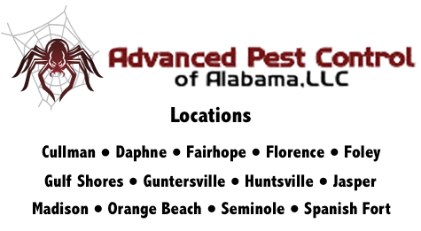 Pest Control Service Locations