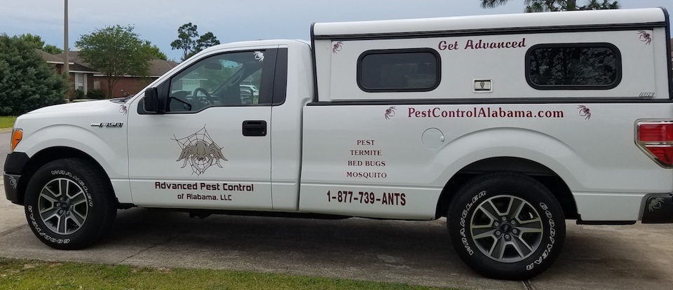 Exterminator in Foley, Alabama