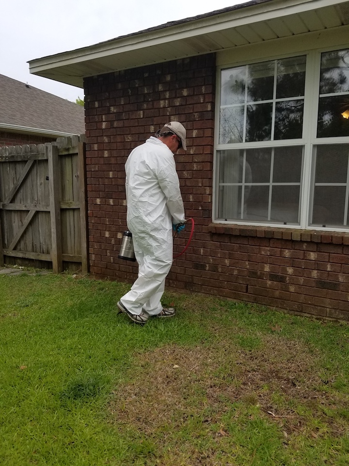 Pest Control in Orange Beach, AL