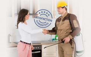 Finding a Great Pest Control Service