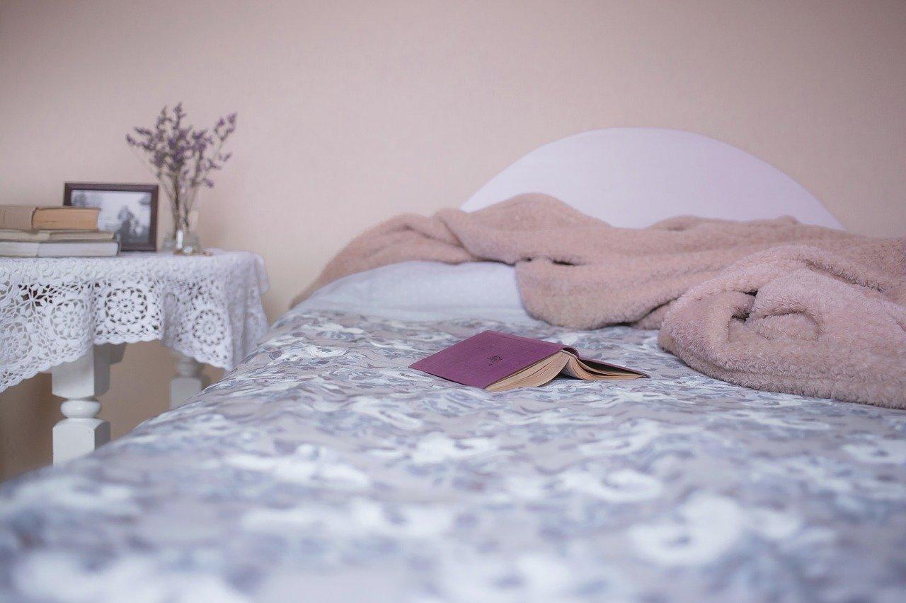 keeping-bedbugs-at-bay