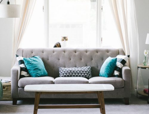 How To Keep Second Hand Furniture Pest Free